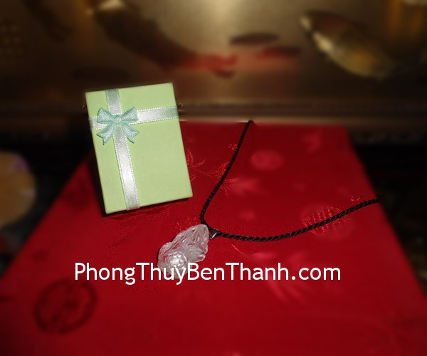 ty-huu-thach-anh-trang-s406